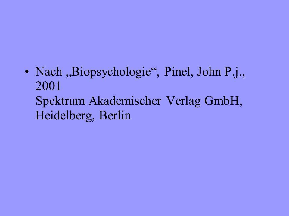 Nach Biopsychologie, Pinel, John P.j., 2001 Spektrum Akademischer Verlag GmbH, Heidelberg, Berlin