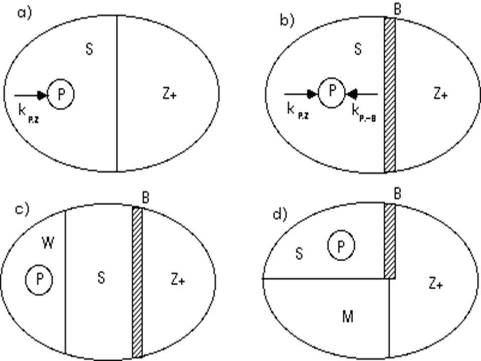 2. Ökologische Psychologie c) Kurt Lewin (Feldtheorie) Annahme: Betonung d. ganzheitlichen Charakters und des dynamischen Zusammenhanges zw. Wahrnehmu