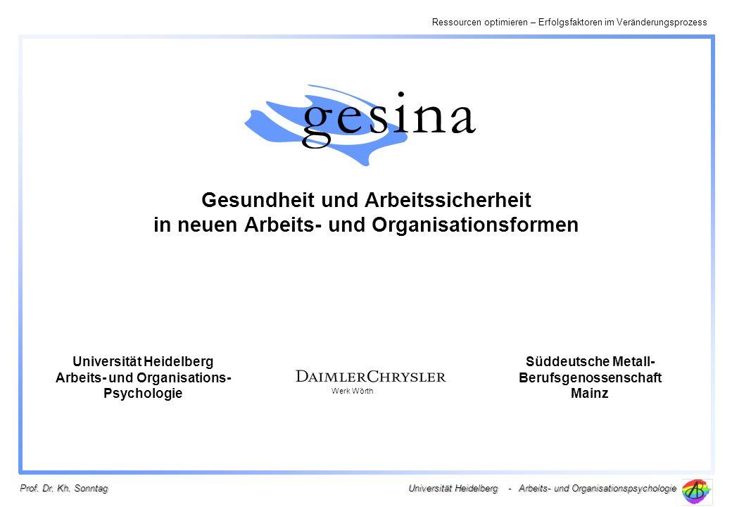 Ressourcen optimieren – Erfolgsfaktoren im Veränderungsprozess Universität Heidelberg - Arbeits- und Organisationspsychologie Prof. Dr. Kh. Sonntag Ge