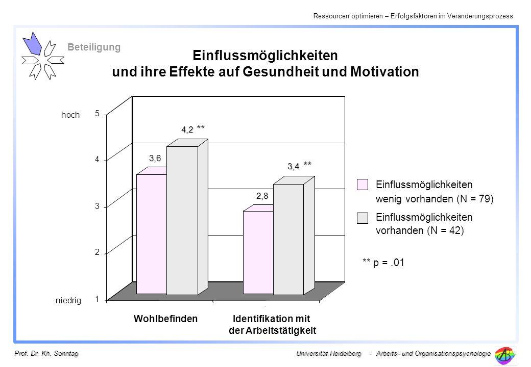 Ressourcen optimieren – Erfolgsfaktoren im Veränderungsprozess Universität Heidelberg - Arbeits- und Organisationspsychologie Prof. Dr. Kh. Sonntag Ei