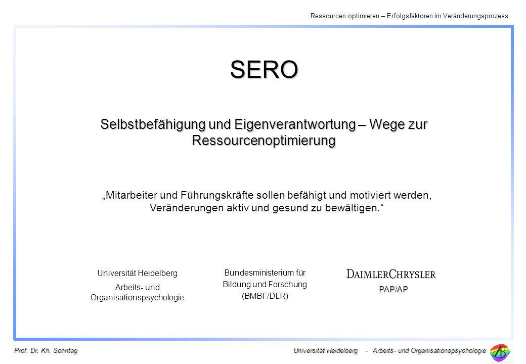 Ressourcen optimieren – Erfolgsfaktoren im Veränderungsprozess Universität Heidelberg - Arbeits- und Organisationspsychologie Prof. Dr. Kh. Sonntag SE