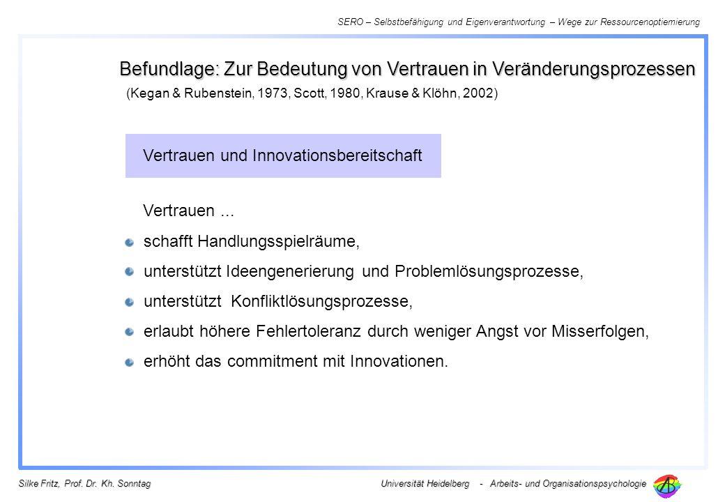 SERO – Selbstbefähigung und Eigenverantwortung – Wege zur Ressourcenoptiemierung Universität Heidelberg - Arbeits- und Organisationspsychologie Silke Fritz, Prof.