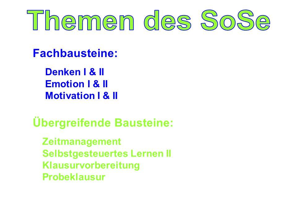 Fachbausteine: Denken I & II Emotion I & II Motivation I & II Übergreifende Bausteine: Zeitmanagement Selbstgesteuertes Lernen II Klausurvorbereitung Probeklausur