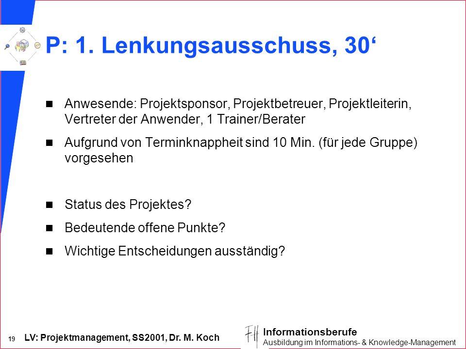 LV: Projektmanagement, SS2001, Dr. M. Koch 19 Informationsberufe Ausbildung im Informations- & Knowledge-Management P: 1. Lenkungsausschuss, 30 n Anwe