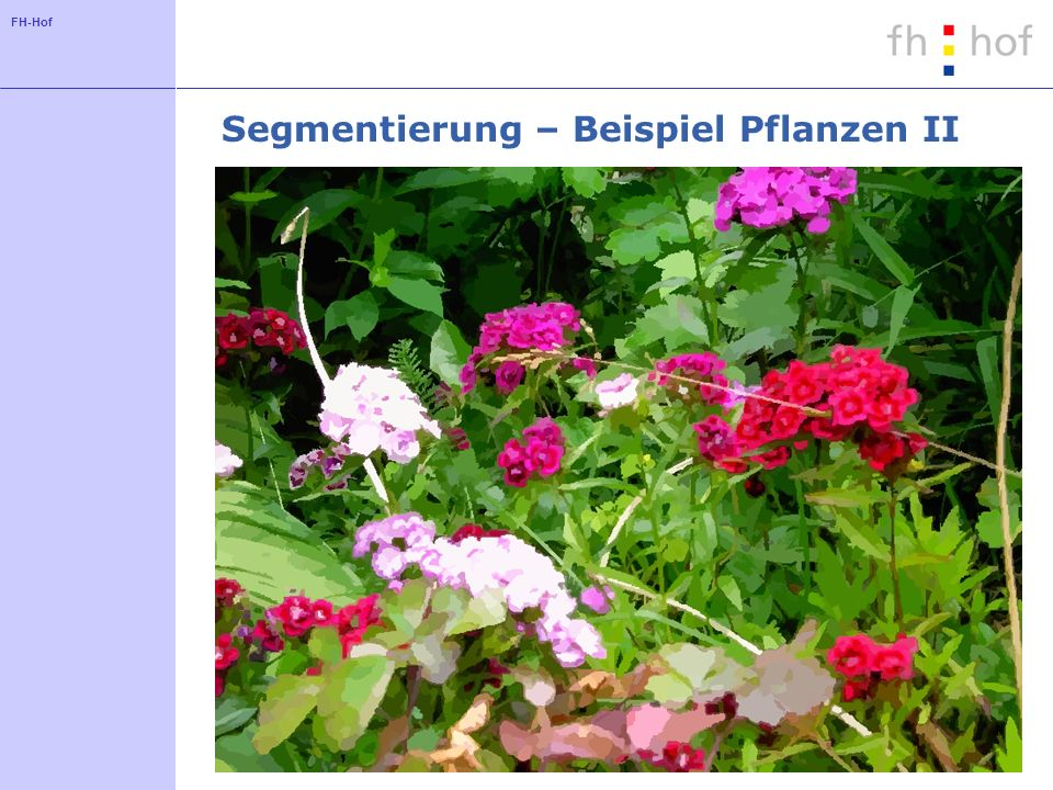 FH-Hof Segmentierung – Beispiel Pflanzen II