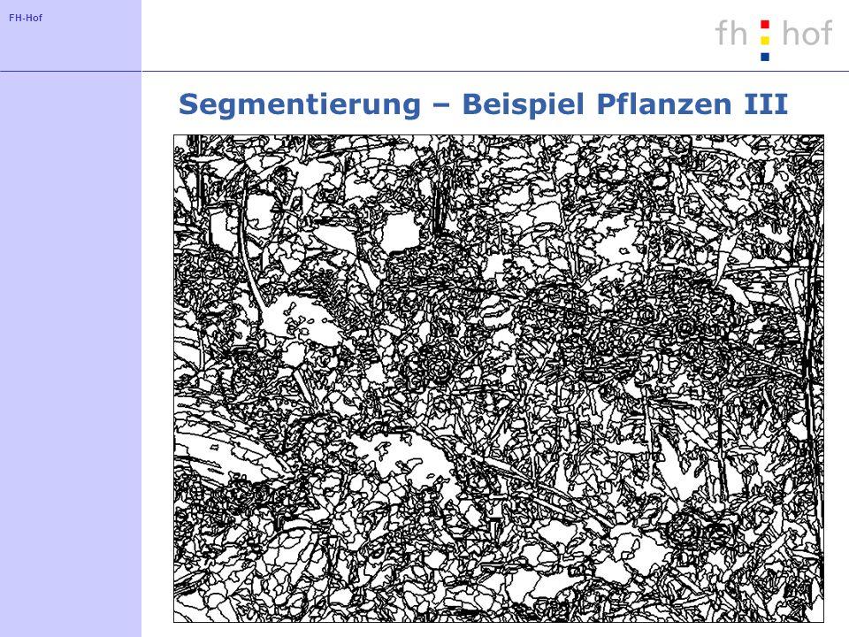 FH-Hof Segmentierung – Beispiel Pflanzen III