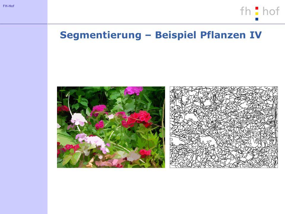 FH-Hof Segmentierung – Beispiel Pflanzen IV
