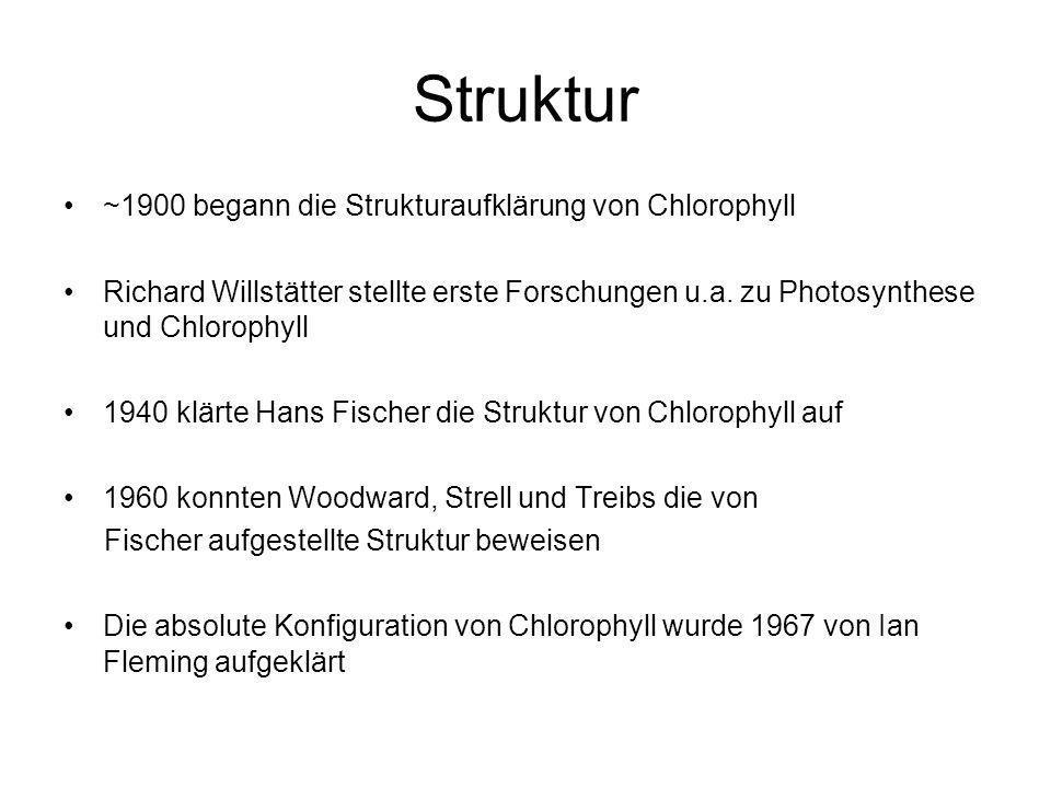 Struktur ~1900 begann die Strukturaufklärung von Chlorophyll Richard Willstätter stellte erste Forschungen u.a. zu Photosynthese und Chlorophyll 1940