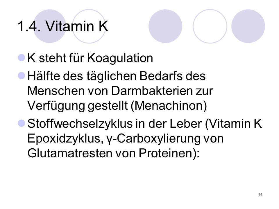 14 1.4. Vitamin K K steht für Koagulation Hälfte des täglichen Bedarfs des Menschen von Darmbakterien zur Verfügung gestellt (Menachinon) Stoffwechsel