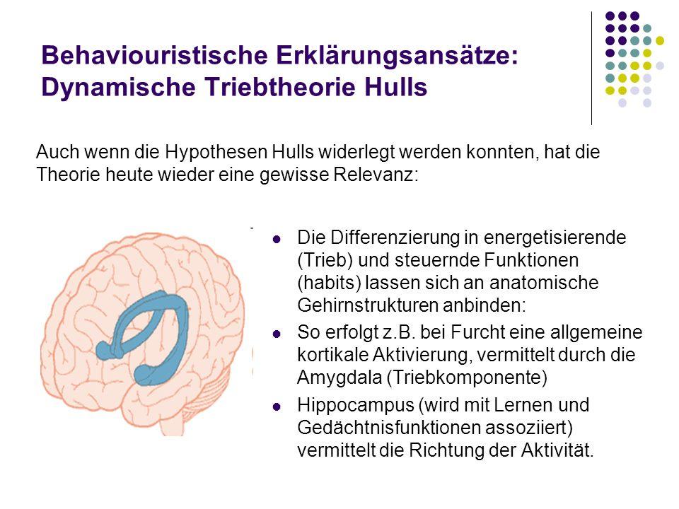 Behaviouristische Erklärungsansätze: Dynamische Triebtheorie Hulls Die Differenzierung in energetisierende (Trieb) und steuernde Funktionen (habits) l