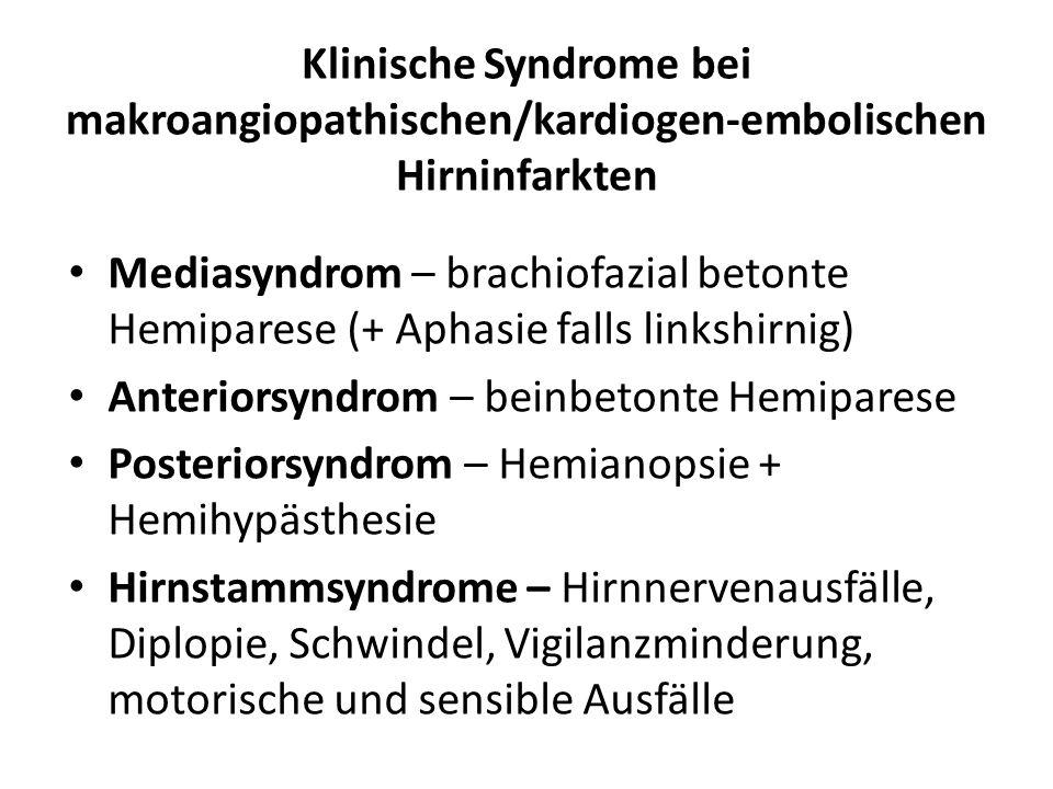 Klinische Syndrome bei makroangiopathischen/kardiogen-embolischen Hirninfarkten Mediasyndrom – brachiofazial betonte Hemiparese (+ Aphasie falls links