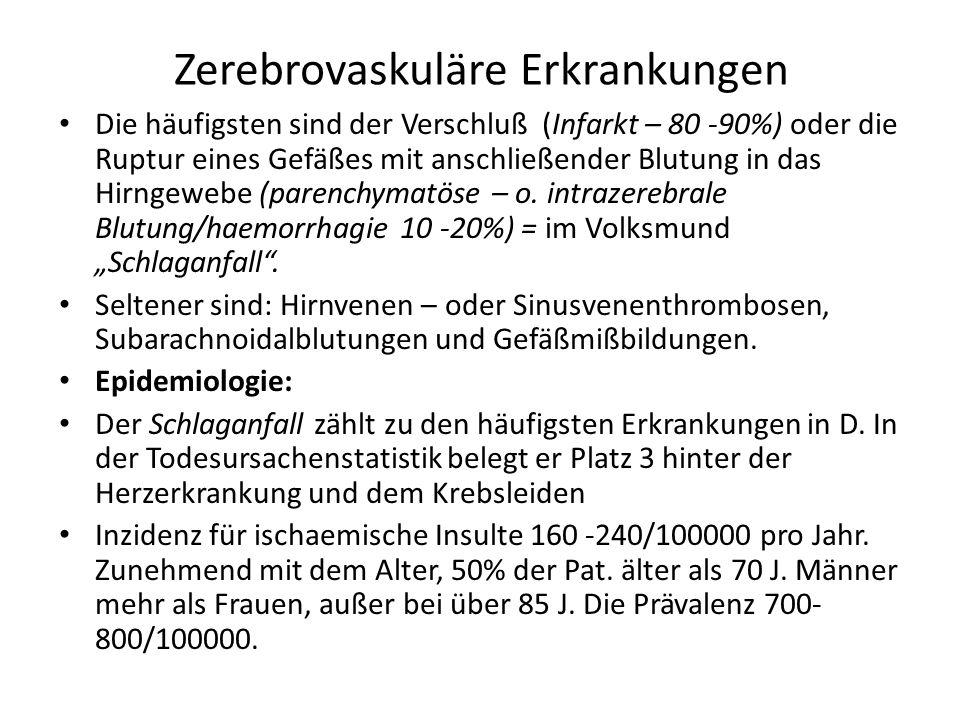Schlaganfall Ischämischer Hirninfarkt Intrazerebrale Blutung Subarachnoidalblutung