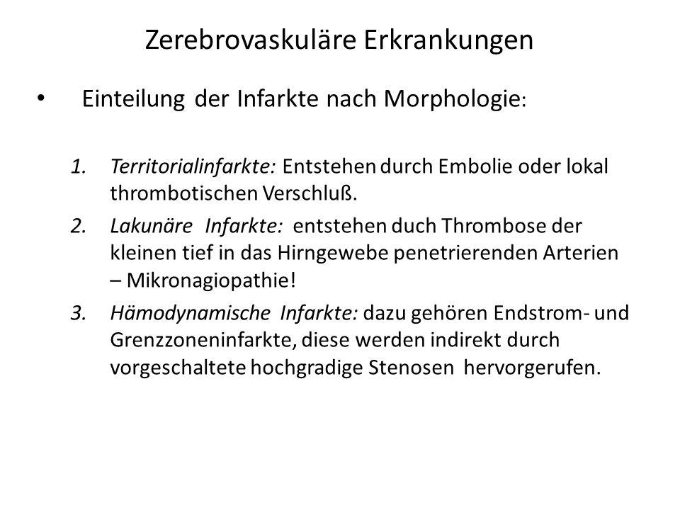 Zerebrovaskuläre Erkrankungen Einteilung der Infarkte nach Morphologie : 1.Territorialinfarkte: Entstehen durch Embolie oder lokal thrombotischen Vers
