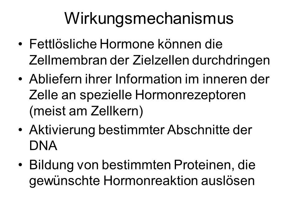 Wirkungsmechanismus Fettlösliche Hormone können die Zellmembran der Zielzellen durchdringen Abliefern ihrer Information im inneren der Zelle an spezielle Hormonrezeptoren (meist am Zellkern) Aktivierung bestimmter Abschnitte der DNA Bildung von bestimmten Proteinen, die gewünschte Hormonreaktion auslösen