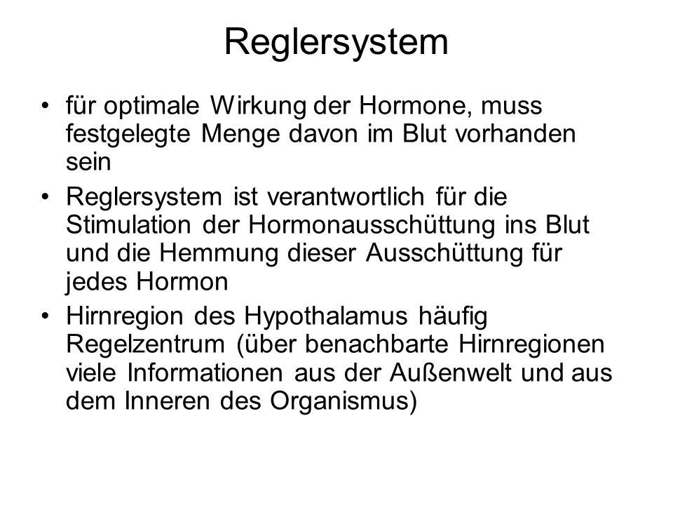 Reglersystem für optimale Wirkung der Hormone, muss festgelegte Menge davon im Blut vorhanden sein Reglersystem ist verantwortlich für die Stimulation der Hormonausschüttung ins Blut und die Hemmung dieser Ausschüttung für jedes Hormon Hirnregion des Hypothalamus häufig Regelzentrum (über benachbarte Hirnregionen viele Informationen aus der Außenwelt und aus dem Inneren des Organismus)