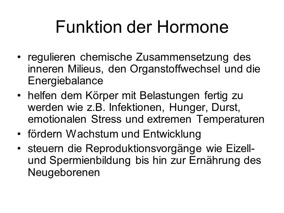 Funktion der Hormone regulieren chemische Zusammensetzung des inneren Milieus, den Organstoffwechsel und die Energiebalance helfen dem Körper mit Belastungen fertig zu werden wie z.B.