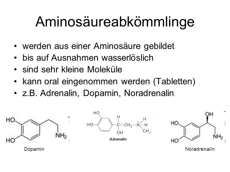 Aminosäureabkömmlinge werden aus einer Aminosäure gebildet bis auf Ausnahmen wasserlöslich sind sehr kleine Moleküle kann oral eingenommen werden (Tabletten) z.B.