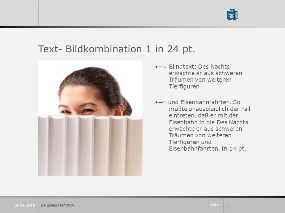 Seite Beispielpräsentation5 14.01.2014 Text- Bildkombination 1 in 24 pt.