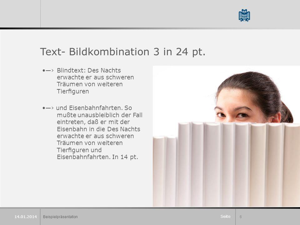Seite Beispielpräsentation6 14.01.2014 Text- Bildkombination 3 in 24 pt.