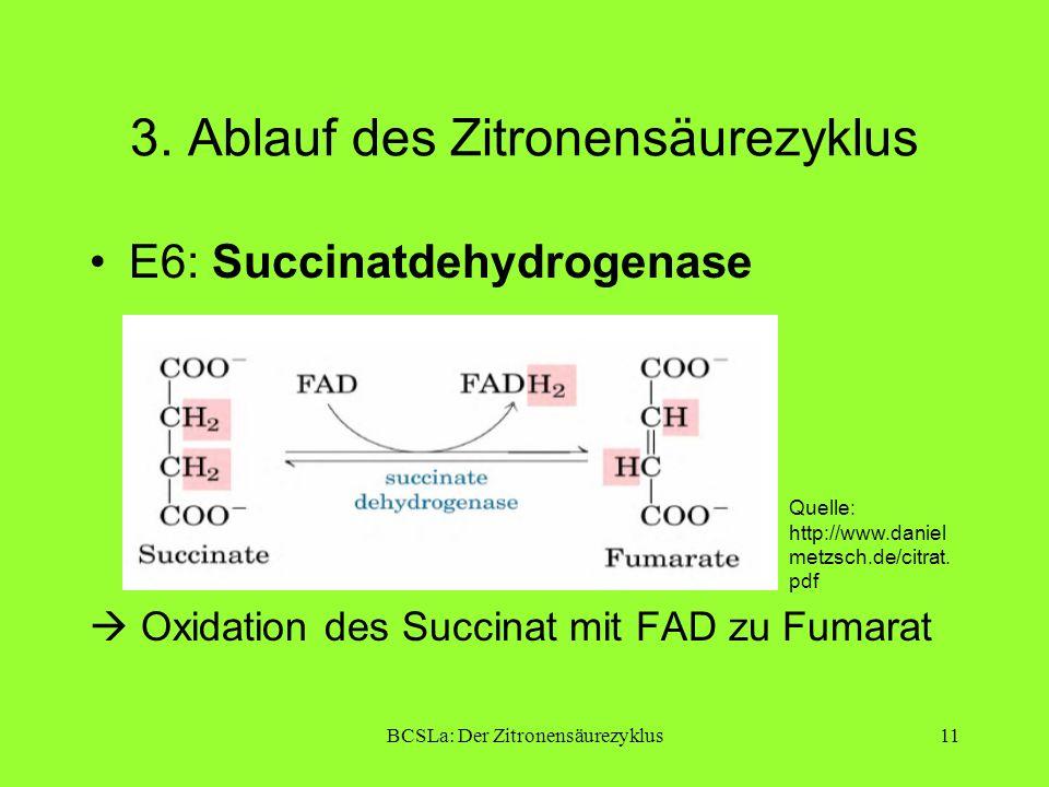 BCSLa: Der Zitronensäurezyklus11 3. Ablauf des Zitronensäurezyklus E6: Succinatdehydrogenase Oxidation des Succinat mit FAD zu Fumarat Quelle: http://