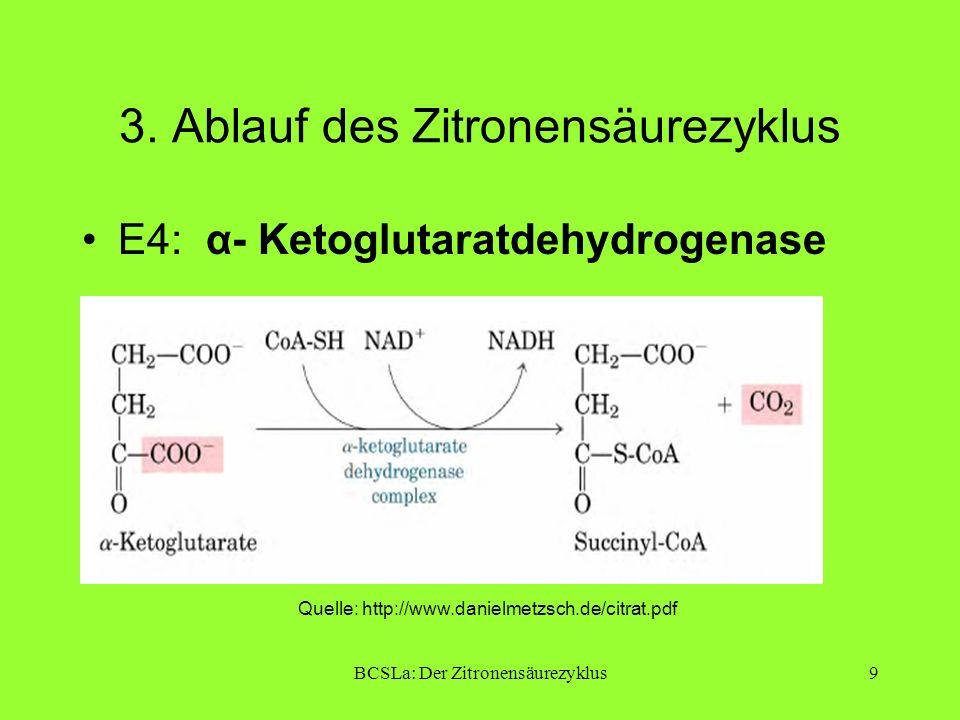 BCSLa: Der Zitronensäurezyklus9 3. Ablauf des Zitronensäurezyklus E4: α- Ketoglutaratdehydrogenase Quelle: http://www.danielmetzsch.de/citrat.pdf