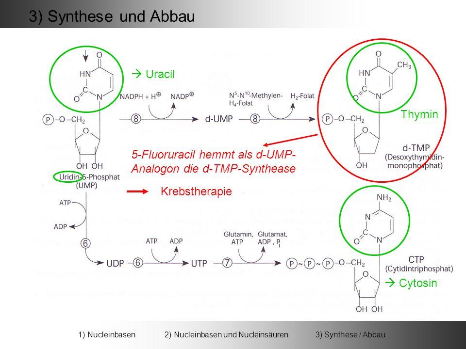 Uracil 3) Synthese und Abbau 5-Fluoruracil hemmt als d-UMP- Analogon die d-TMP-Synthease Krebstherapie 1) Nucleinbasen 2) Nucleinbasen und Nucleinsäuren 3) Synthese / Abbau Thymin Cytosin