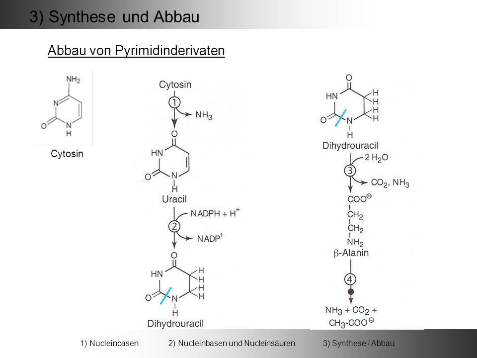 3) Synthese und Abbau Abbau von Pyrimidinderivaten Cytosin 1) Nucleinbasen 2) Nucleinbasen und Nucleinsäuren 3) Synthese / Abbau