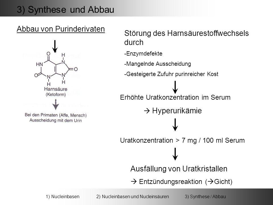 3) Synthese und Abbau Abbau von Purinderivaten Störung des Harnsäurestoffwechsels durch -Enzymdefekte -Mangelnde Ausscheidung -Gesteigerte Zufuhr purinreicher Kost Erhöhte Uratkonzentration im Serum Hyperurikämie Uratkonzentration > 7 mg / 100 ml Serum Ausfällung von Uratkristallen Entzündungsreaktion ( Gicht) 1) Nucleinbasen 2) Nucleinbasen und Nucleinsäuren 3) Synthese / Abbau