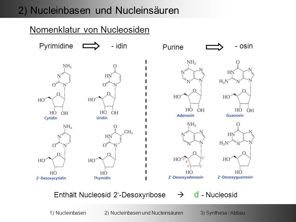 Nomenklatur von Nucleosiden Pyrimidine Purine - idin- osin 2) Nucleinbasen und Nucleinsäuren 1) Nucleinbasen 2) Nucleinbasen und Nucleinsäuren 3) Synthese / Abbau Enthält Nucleosid 2-Desoxyribose d - Nucleosid