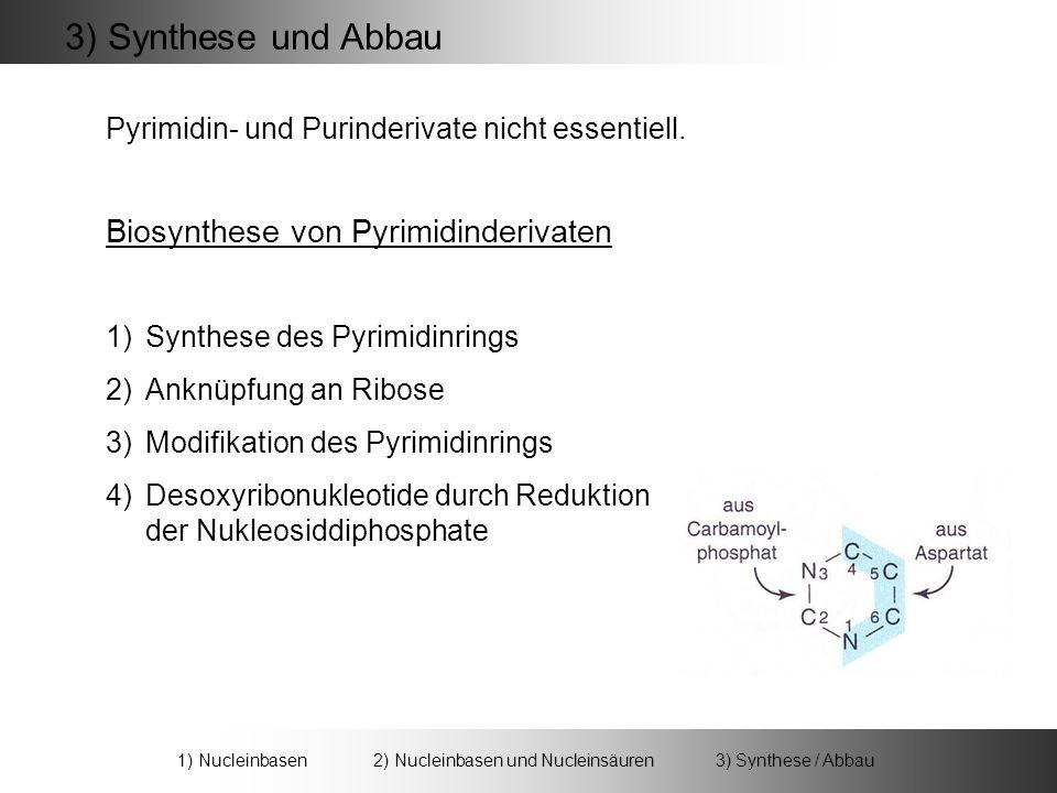 3) Synthese und Abbau Biosynthese von Pyrimidinderivaten 1) Nucleinbasen 2) Nucleinbasen und Nucleinsäuren 3) Synthese / Abbau