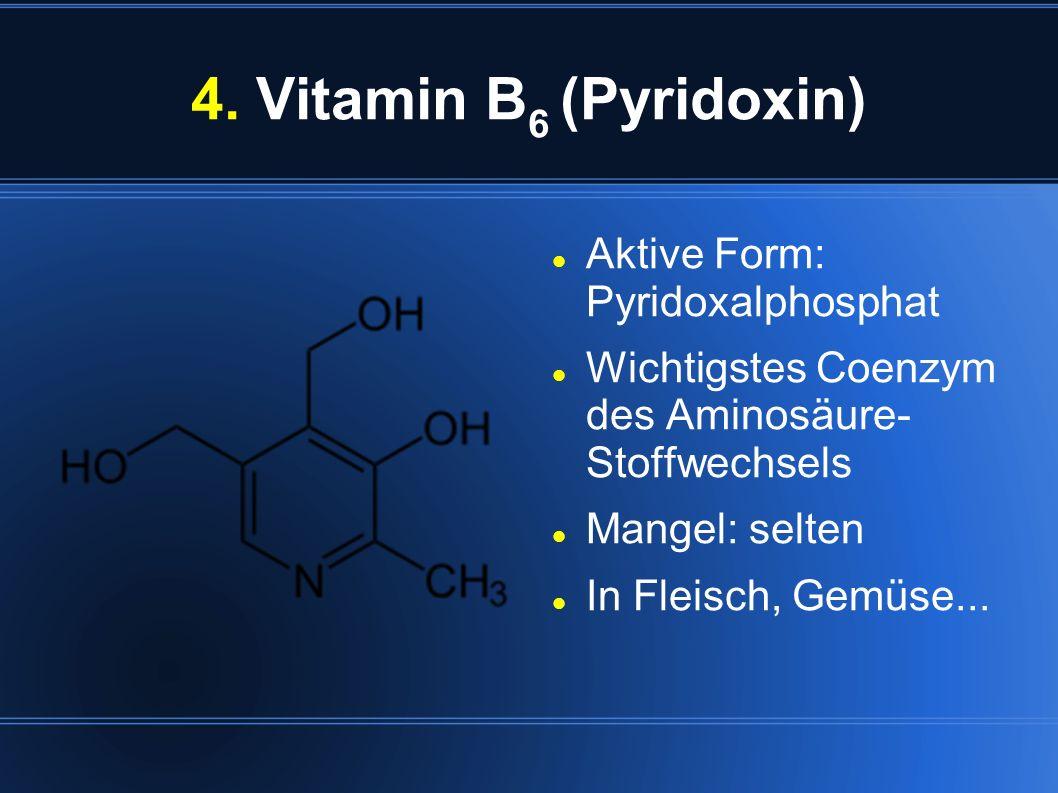 4. Vitamin B 6 (Pyridoxin) Aktive Form: Pyridoxalphosphat Wichtigstes Coenzym des Aminosäure- Stoffwechsels Mangel: selten In Fleisch, Gemüse...