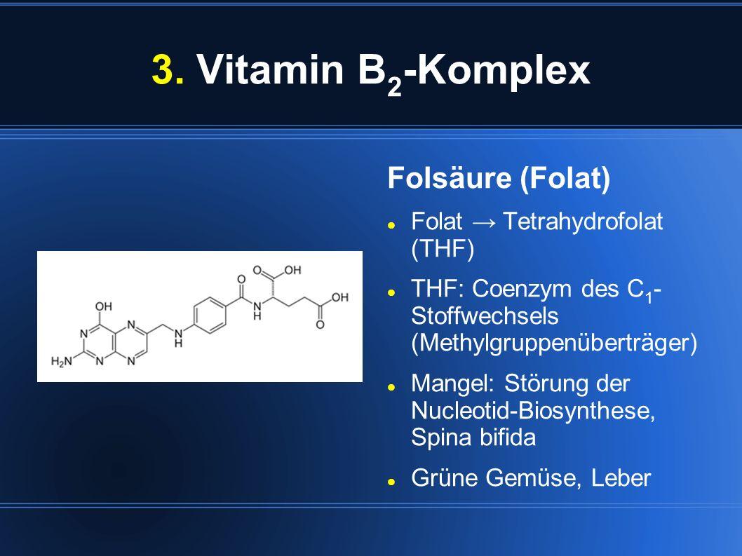 3. Vitamin B 2 -Komplex Folsäure (Folat) Folat Tetrahydrofolat (THF) THF: Coenzym des C 1 - Stoffwechsels (Methylgruppenüberträger) Mangel: Störung de