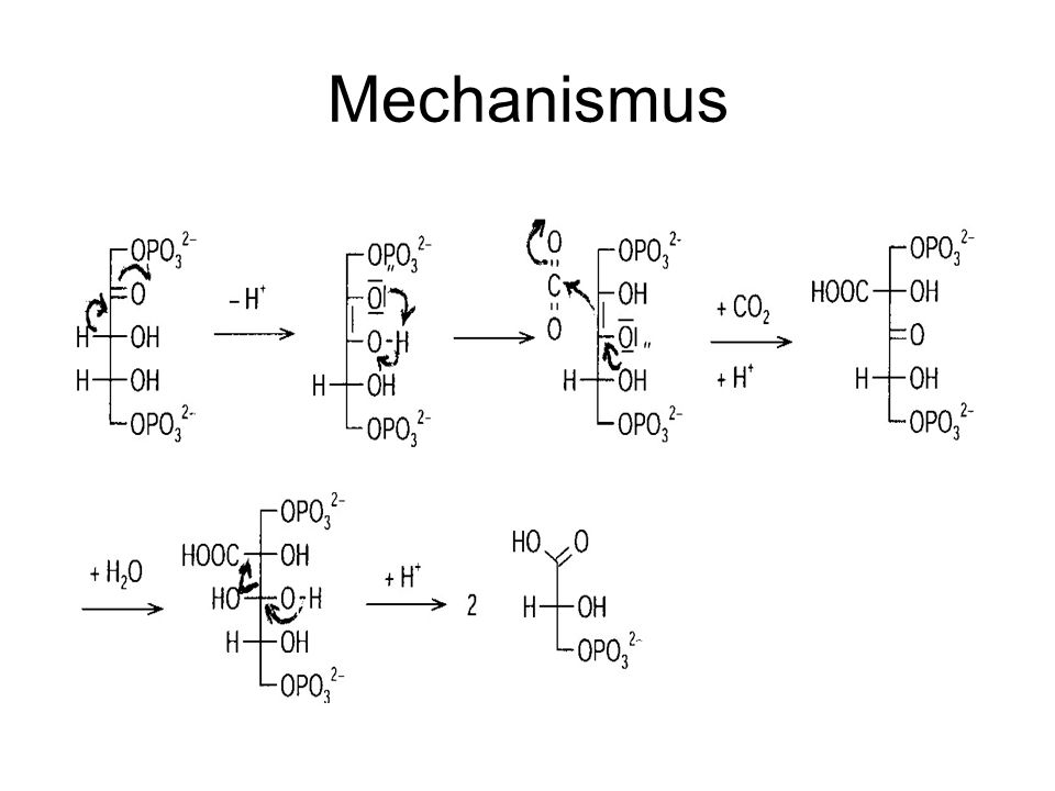 (3PGS = 3-Phosphoglycerinsäure 1,3-DiPGS = 1,3- Diphosphoglycerat G3P = Glycerinaldehyd-3-phosphat )