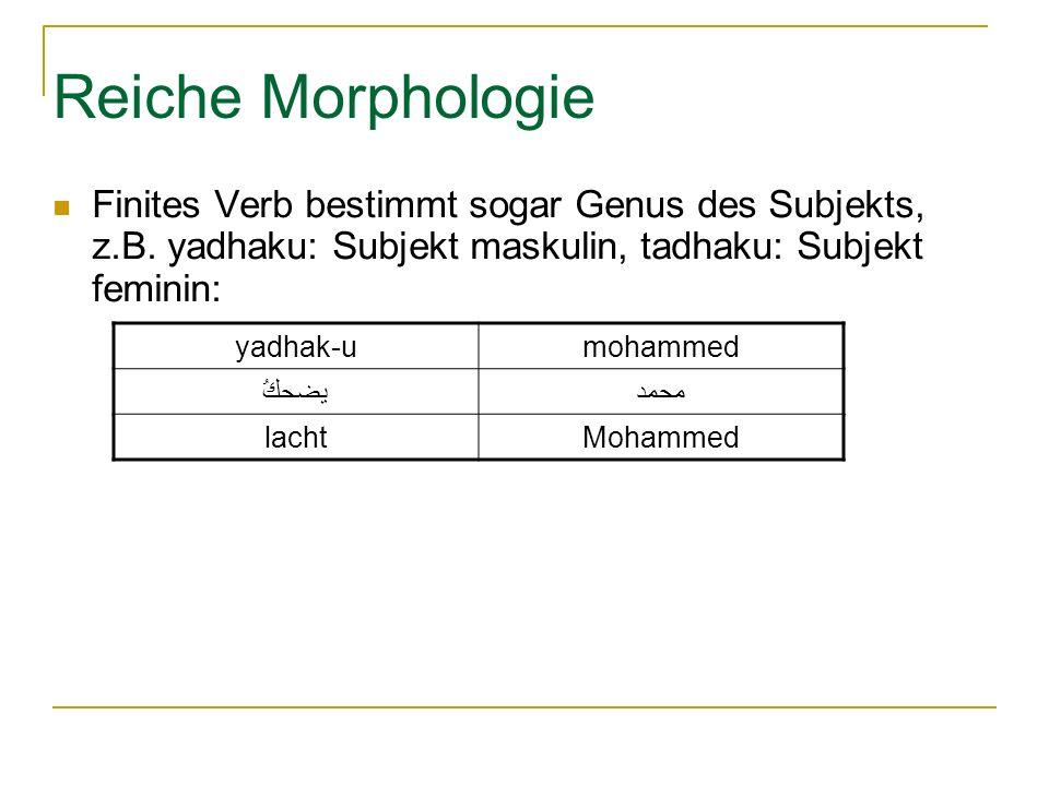 Reiche Morphologie Finites Verb bestimmt sogar Genus des Subjekts, z.B.