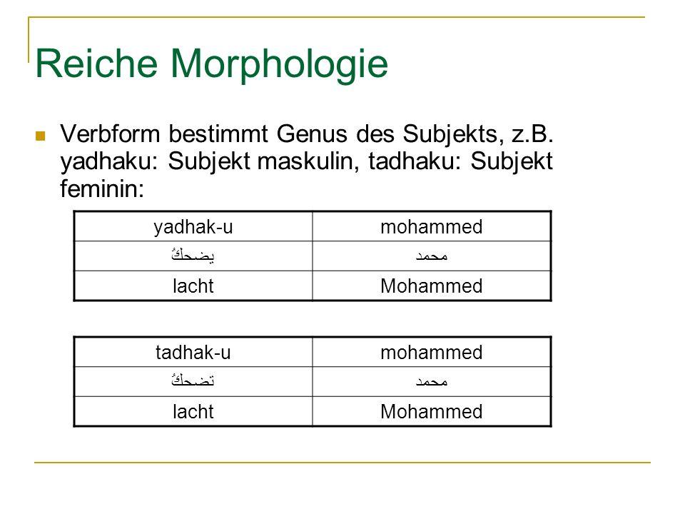Reiche Morphologie Verbform bestimmt Genus des Subjekts, z.B.