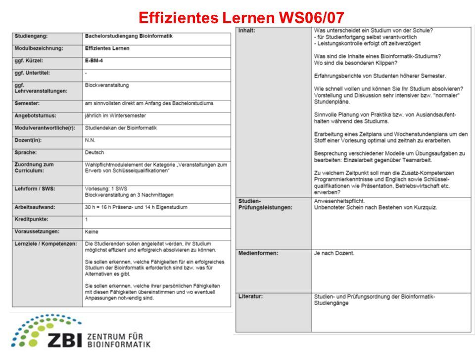 Effizientes Lernen WS06/07