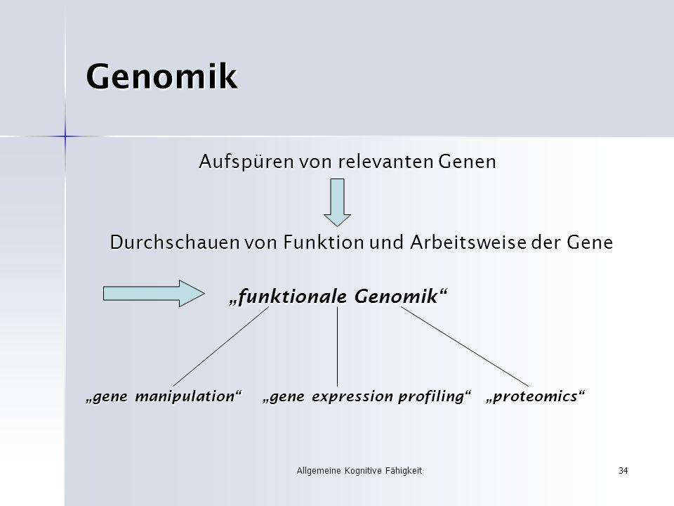 Allgemeine Kognitive Fähigkeit34 Genomik Aufspüren von relevanten Genen Aufspüren von relevanten Genen Durchschauen von Funktion und Arbeitsweise der