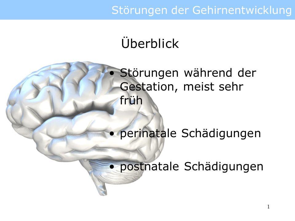 2 Störungen der Gehirnentwicklung Störungen: dorsale und ventrale Einflüsse auf das Neuralrohr Störungen der Proliferation Ursachen Ausprägungen Behandlung Gliederung
