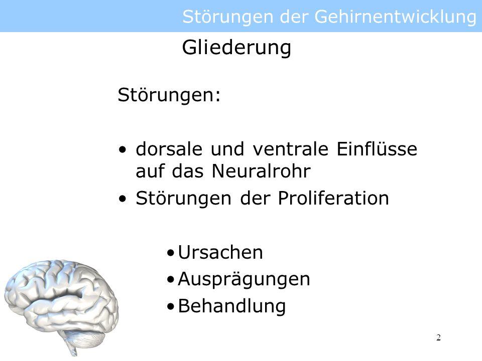 3 Störungen der Gehirnentwicklung genetisch und chromosomal Fehl- oder Mangelernährung Infektionen und Parasiten Vergiftungen und Strahlenschäden Ursachen