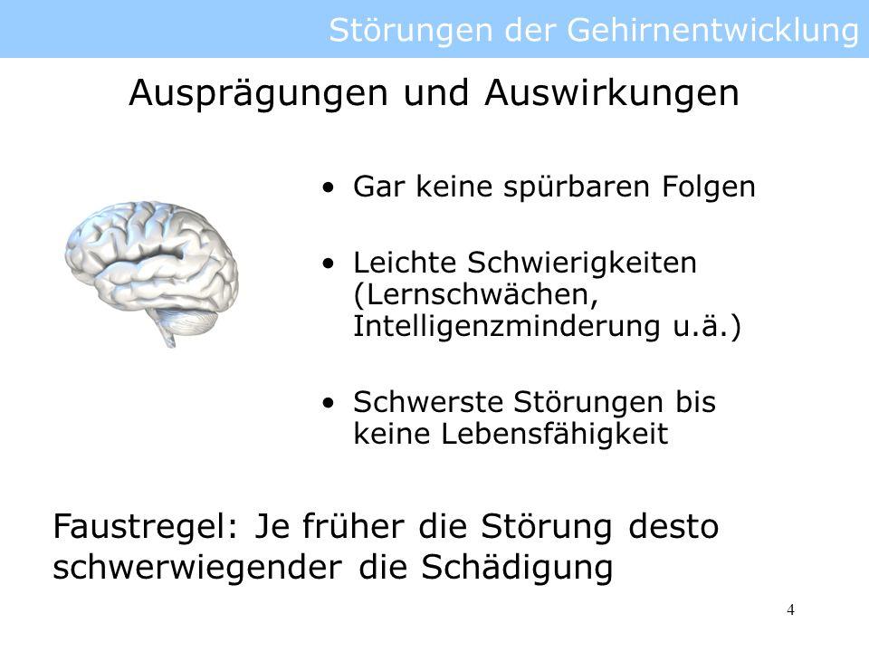 5 Störungen der Gehirnentwicklung Abhängig vom Typ der Störung Meist nur präventiv oder Behandlung der Symptome möglich Operationen Behandlung