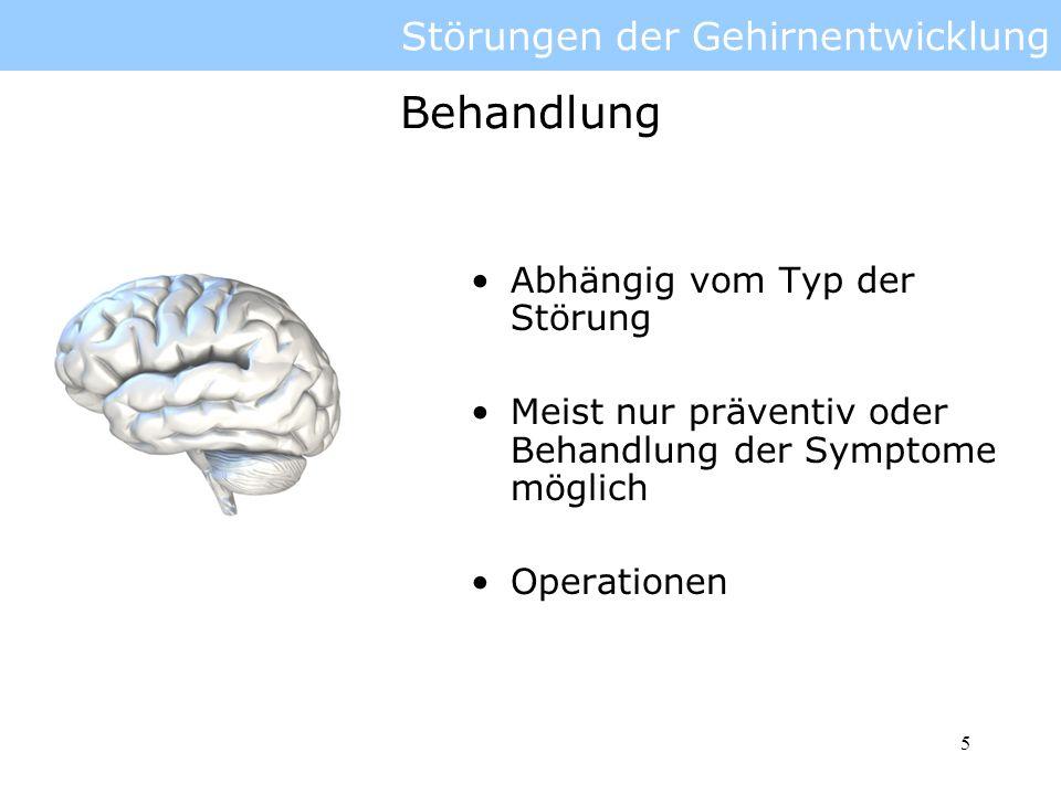 6 Störungen der Gehirnentwicklung: dorsale Einflüsse Kopf: oben Rücken: hinten Dorsale Einflüsse