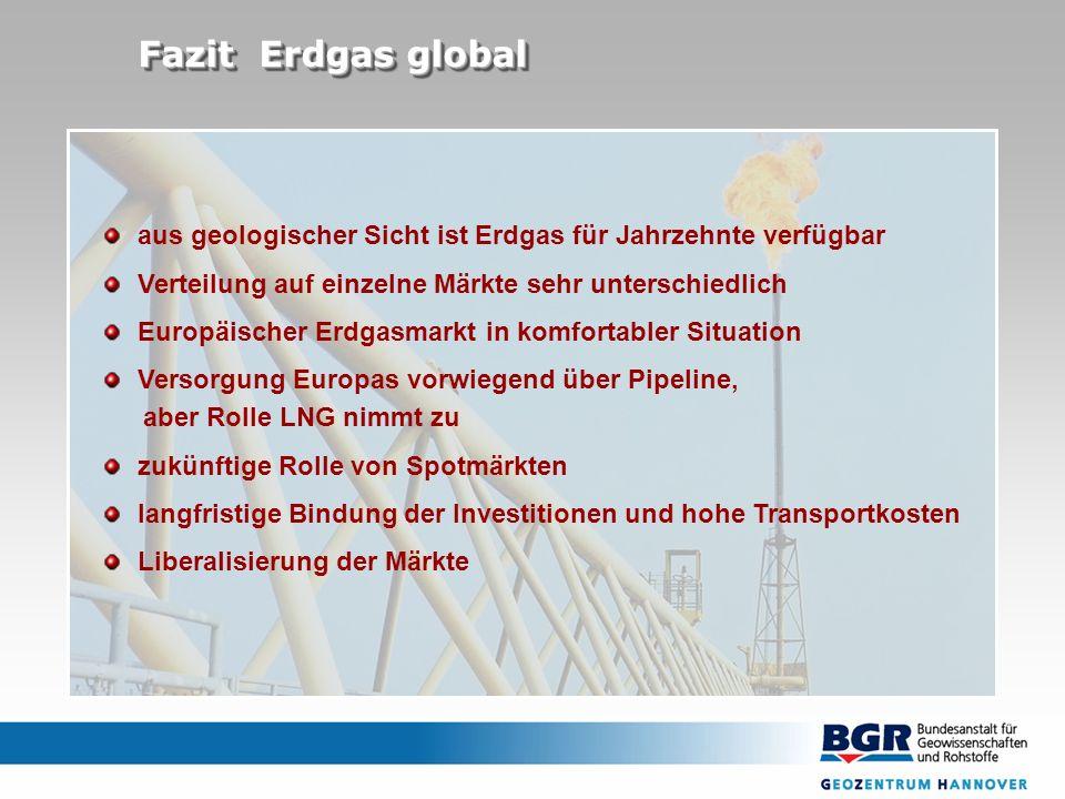 aus geologischer Sicht ist Erdgas für Jahrzehnte verfügbar Verteilung auf einzelne Märkte sehr unterschiedlich Europäischer Erdgasmarkt in komfortable