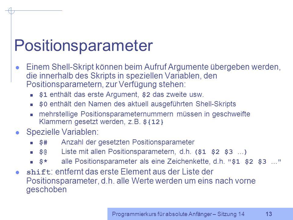 Programmierkurs für absolute Anfänger – Sitzung 14 12 Variablen (2) Variablenauswertung: Alle Variablen werden durch das Voranstellen eines Dollarzeic