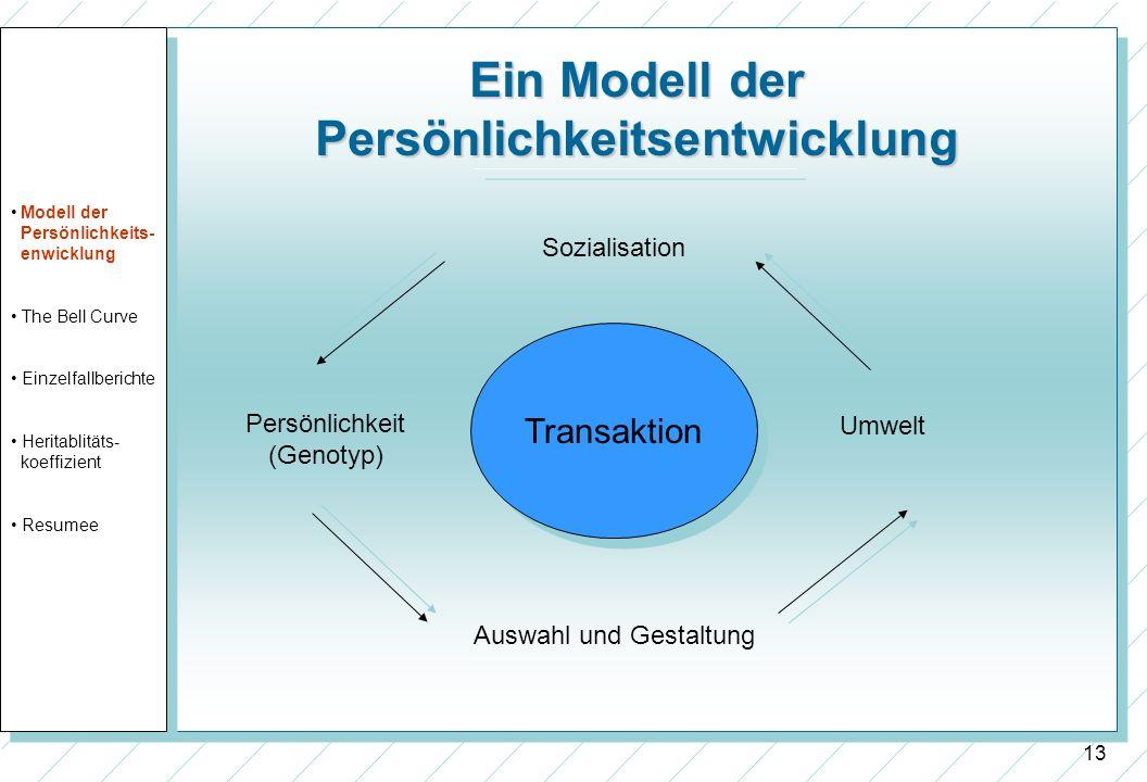 13 Ein Modell der Persönlichkeitsentwicklung Transaktion Sozialisation Auswahl und Gestaltung Umwelt Persönlichkeit (Genotyp) Modell der Persönlichkei