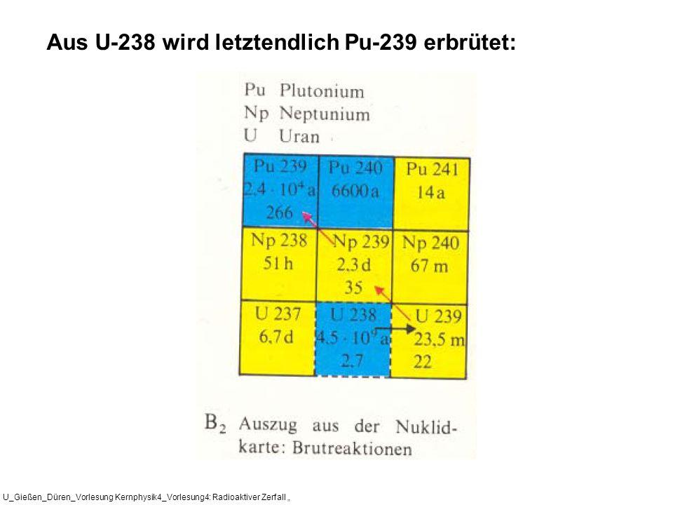 U_Gießen_Düren_Vorlesung Kernphysik4_Vorlesung4: Radioaktiver Zerfall Aus U-238 wird letztendlich Pu-239 erbrütet: