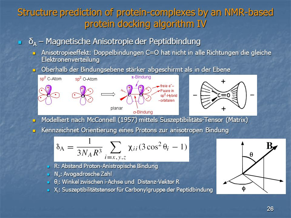 26 Structure prediction of protein-complexes by an NMR-based protein docking algorithm IV δ A – Magnetische Anisotropie der Peptidbindung δ A – Magnet