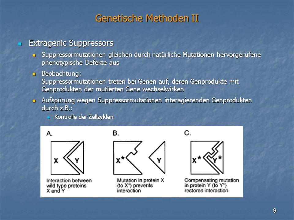 9 Genetische Methoden II Extragenic Suppressors Extragenic Suppressors Suppressormutationen gleichen durch natürliche Mutationen hervorgerufene phenot