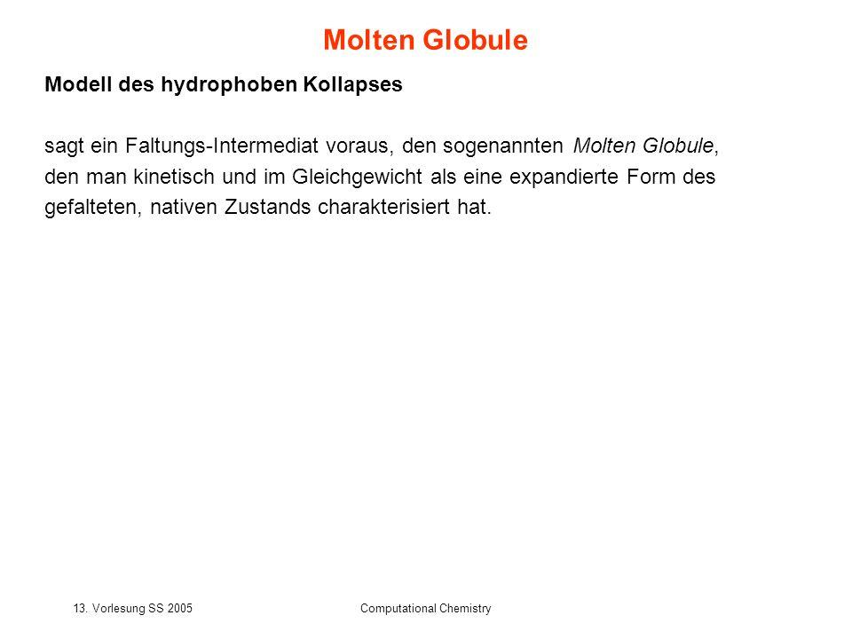 13. Vorlesung SS 2005Computational Chemistry Modell des hydrophoben Kollapses sagt ein Faltungs-Intermediat voraus, den sogenannten Molten Globule, de