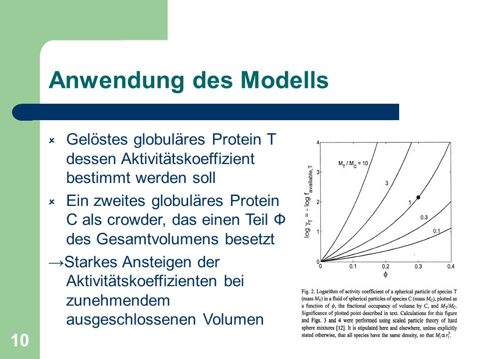 10 Anwendung des Modells Gelöstes globuläres Protein T dessen Aktivitätskoeffizient bestimmt werden soll Ein zweites globuläres Protein C als crowder,