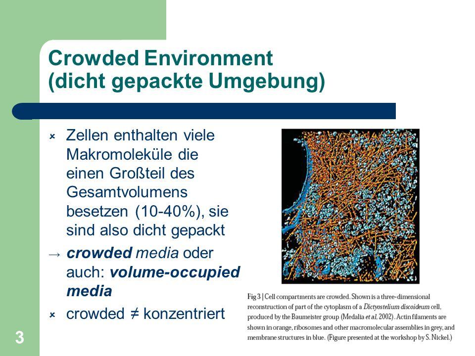 3 Crowded Environment (dicht gepackte Umgebung) Zellen enthalten viele Makromoleküle die einen Großteil des Gesamtvolumens besetzen (10-40%), sie sind